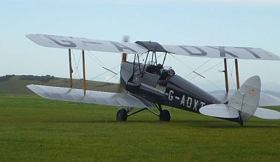 Tiger Moth