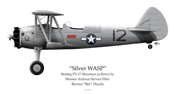 """""""Silver Wasp"""" Boeing PT-17 Stearman by John Mollison"""